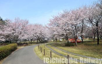 川本サングリーンパーク(かわもとさんぐりーんぱーく)