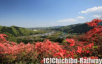 金尾山ツツジ園(かなおやまつつじえん)