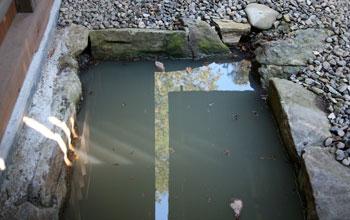 みそぎの泉